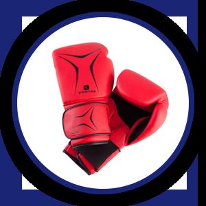 guantoni kumite seido karate