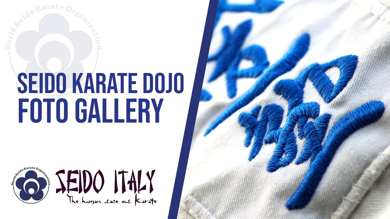 Seido Karate dojo - Foto Gallery