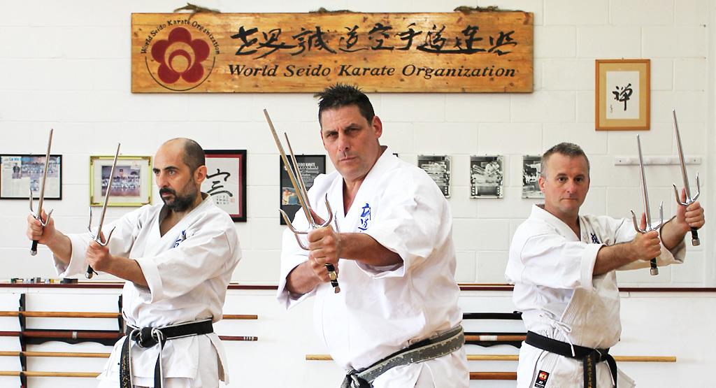 World Seido Karate Italy Sesto Fiorentino